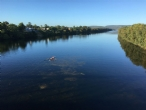 Rowing on the Nepean River